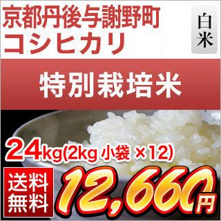 令和元年産(2019年) 京都丹後与謝野町産 コシヒカリ 白米・玄米 24kg(2kg×12袋) 【送料無料】【特別栽培米】