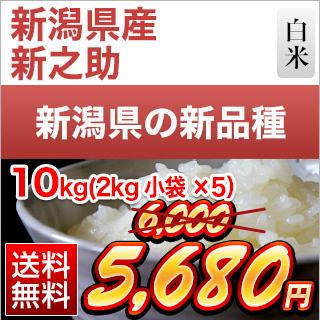 令和元年産(2019年) 新潟県の新ブランド 新之助 白米 10kg(2kg×5袋)【送料無料】