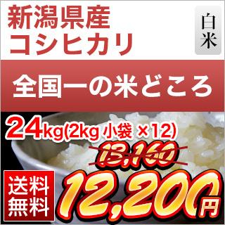 令和元年産(2019年) 新潟県産 コシヒカリ<特A評価> 24kg (2kg×12袋)【白米】【送料無料】【米袋は真空包装】【値下げしました】