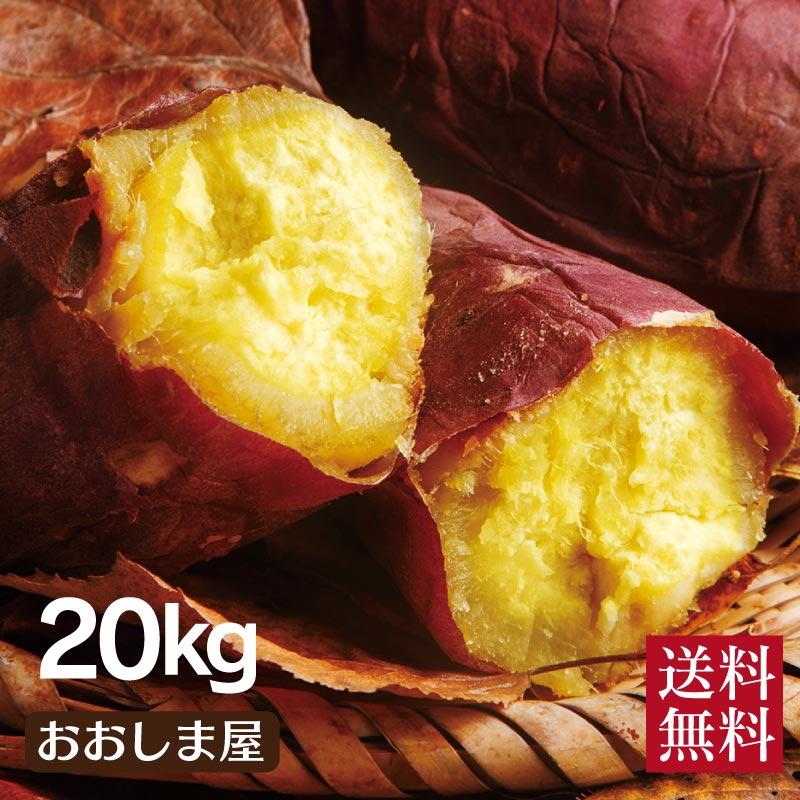 \10%OFF スーパーSALE/ さつまいも シルクスイート 送料無料 20kg(60本-100本) 生芋 さつま芋 唐芋 からいも 土付き 泥付き 野菜 旬 料理 レシピ 国産 熊本 大嶌屋(おおしまや)