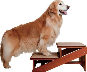 木製2wayステップ アドバンス【大型犬対応】階段とスロープに切り替えができる一台二役の木製ステップ【あす楽対応】 [単独梱包]