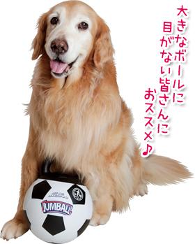 """早割クーポン """"ジャンボ""""なハンドルが付いた直径約20cmのサッカーボールのおもちゃ 新作続 ジャンボール あす楽対応 大型犬用おもちゃ"""