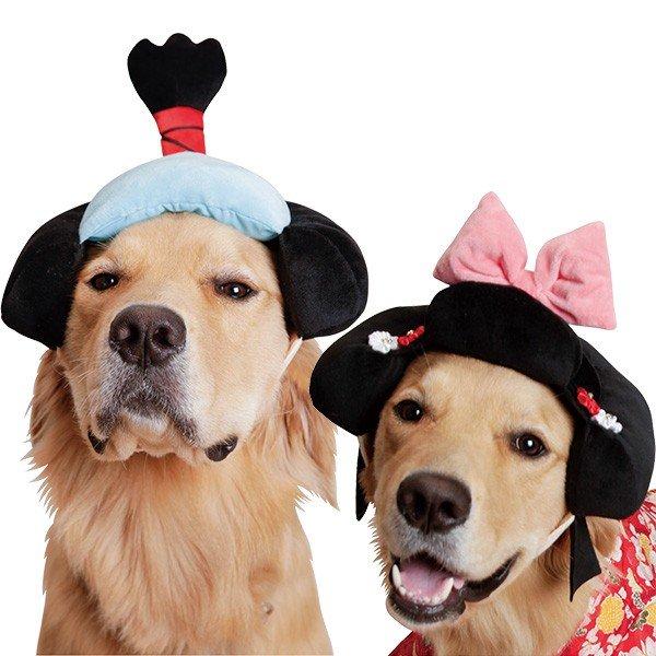 ちょっとおすまししてお殿さまにへ~んしん お殿さま お姫さま <セール&特集> あす楽対応 内祝い 大型犬用かつら