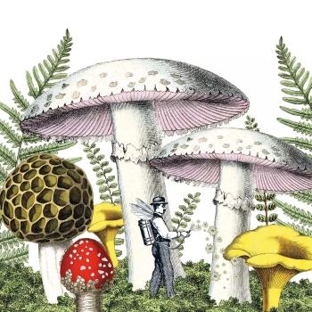 新商品 ペーパーナプキン40枚までメール便可 パーティー プチギフト デポー デコパージュに最適 PPD 素敵な Mushrooms シダ植物☆ 1枚 デコパージュ☆キノコと小人 ペーパーナプキン バラ売り