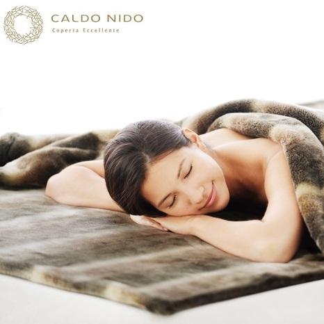 暖かい 毛布 カルドニード・ノッテ 敷き毛布 ダブル 発熱 高級 日本製 アクリル 洗える CALDO NIDO 軽量 送料無料