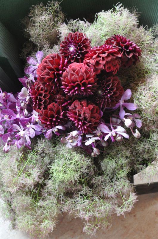 母の日 プレゼント パープル・ブラック系 花束 【誕生日 贈り物 ギフトに個性的なお花を】