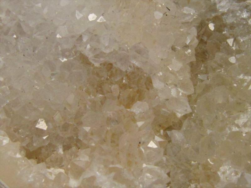 激レア クォーツ化した貝の化石 インド産 クリスタルシェル アゲートシェル 原石 長さ約49mm 約33g 携帯ポーチ付きQtBhrdsCx
