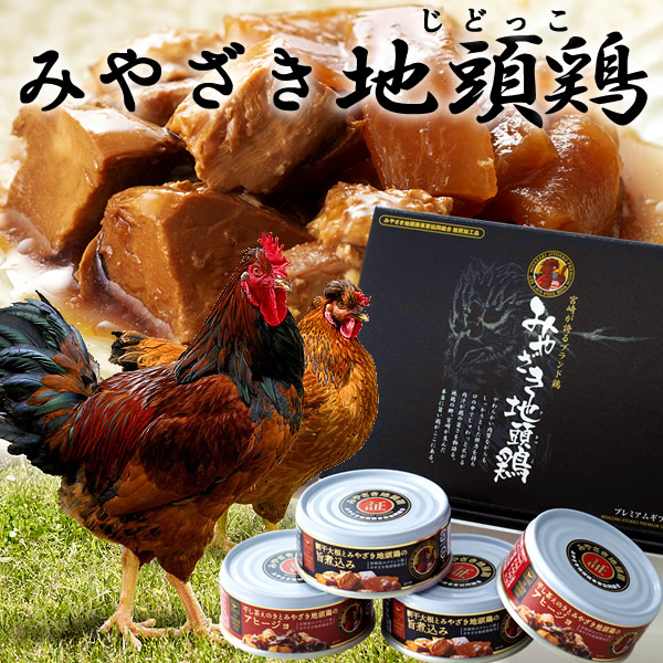 宮崎みやざき地頭鶏(じどっこ)缶詰セット[4缶]×3【送料無料】