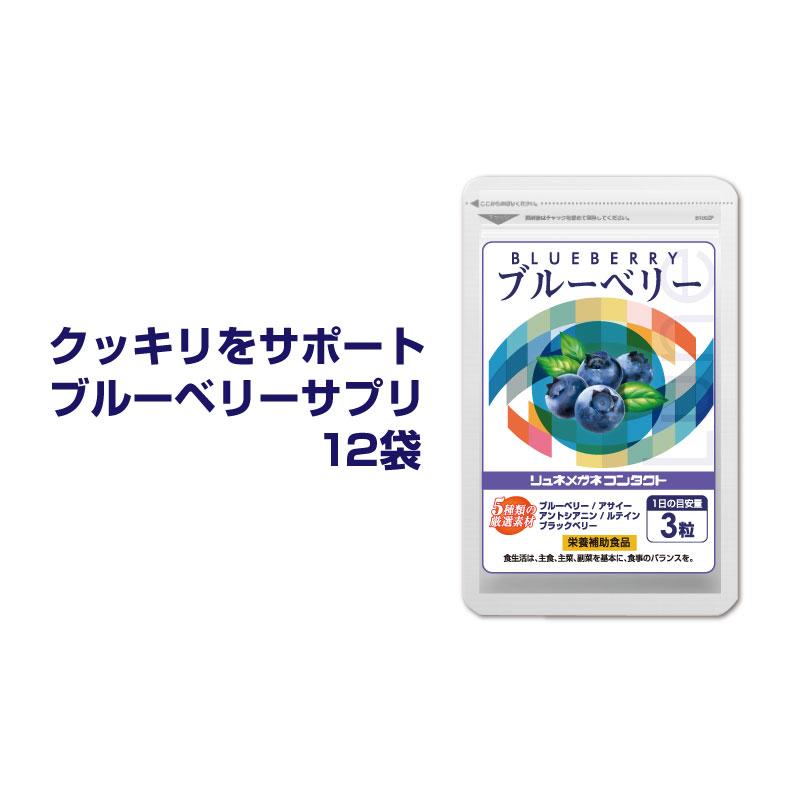 ブルーベリー(約12ヵ月分)ルテイン ・ ビタミンB12.B1.B6配合。(90粒入/1袋×12袋 約12ヵ月分) 新聞・読書がお好きな方に。パソコンやスマホの使用が多い方。