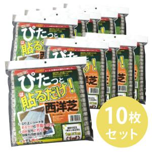 【送料無料】(まとめ買い)ぴたっと貼るだけ!西洋芝(芝生シート)[×10袋(10シート)]セット