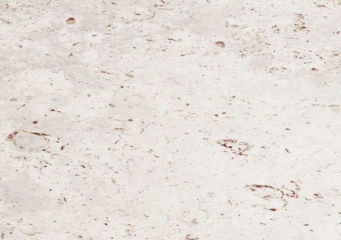 【新品番:KEBT1V1XY】NEW WPBリフォームフロアー 珊瑚石柄 リフォーム かんたん フローリング 床材 パナソニック Panasonic