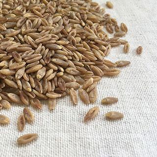 雑穀>大麦>スーパー大麦
