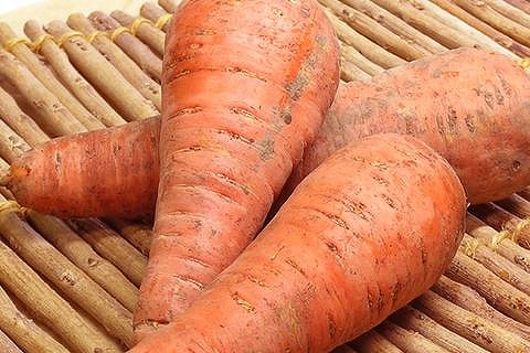 Specially grown carrots approx. 5 kg