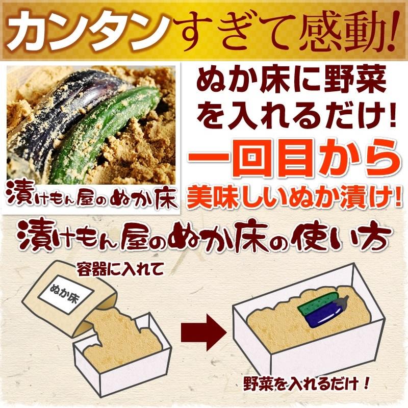 "Pickle's shop ""tsukemonowith 1 kg (bag)"""
