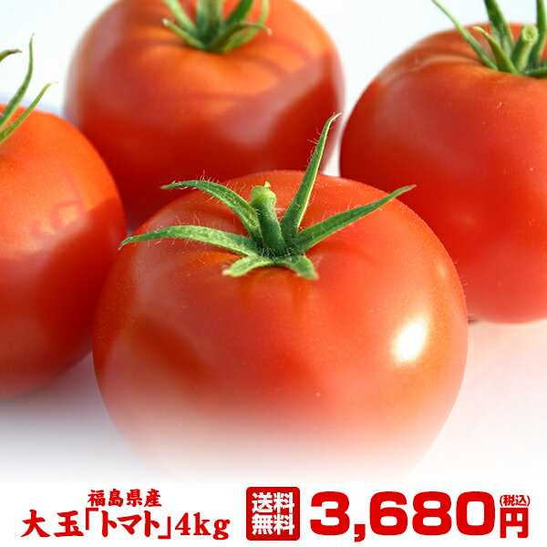大玉 トマト 4kg 福島県 いわき産 酸味と甘みのバランスが絶妙な新鮮トマト
