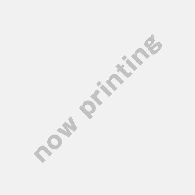BW ビレットグリル(エアダムグリル) 日産UD大型 クオン(H16.11~H29.4) ※ステンレス製 交換式 [3011331]
