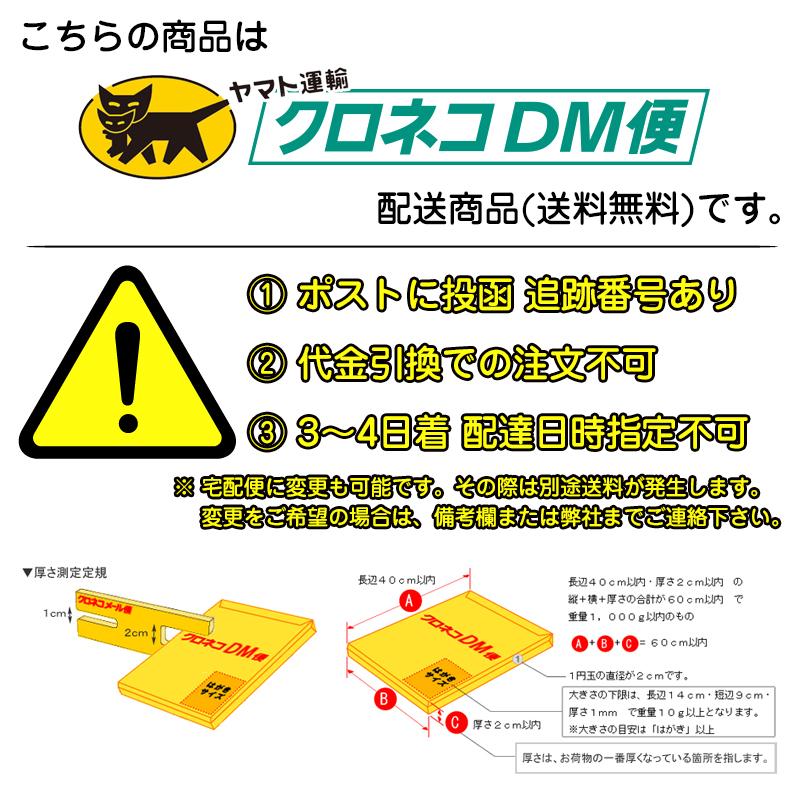 建築士試験用組み合わせテンプレート定規100x230x1mm  2段カット【DM便で】