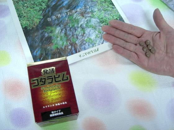 【送料無料】発酵コタラヒム180粒 酵素の力で体をリフレッシュ!♪料】