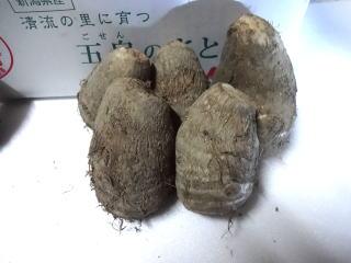 【送料無料】五泉の里芋 東北の芋煮会の主役。新潟の美味しいさとうもが芋煮会で活躍。さといも5キログラム