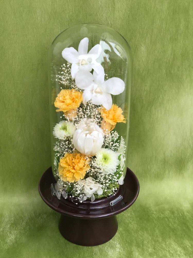 仏花 ガラスドーム入りアレンジ 淨 白のデンファレと黄色いカーネーション プリザーブドフラワー [PW]