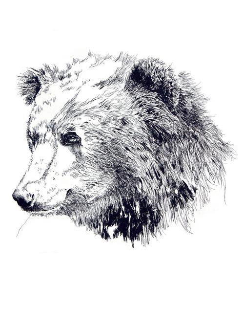 ジムボバート Jimbobart A4 アートプリント Bear ベア 250枚限定 直筆サイン入り 絵画 インテリア おしゃれ 北欧 プレゼント ギフト 新生活 新居 引越し祝い 新築 子供
