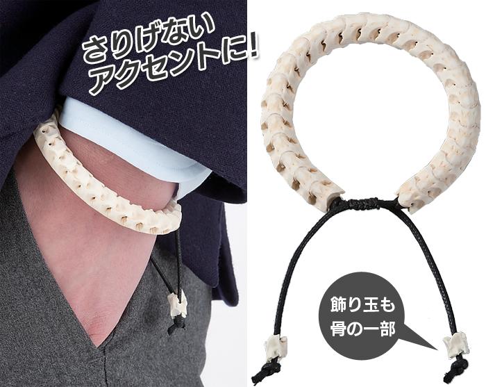 錢蛇骨護身符手鐲幸運護身符手鐲好運氣蛇蛇骨手鐲配套的魅力