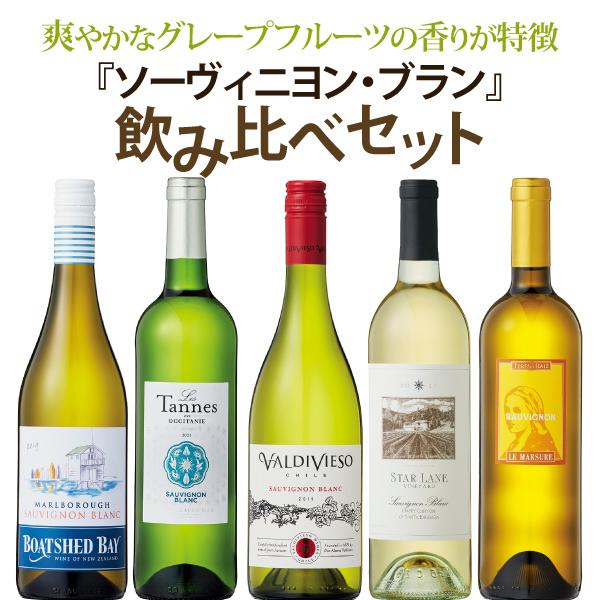人気ワイナリーのソーヴィニヨン・ブラン100%ワイン【通常サイズ7本まで同梱OK!】【white wine】【割引】【お買い得】【SALE】【Sauvignon Blanc】 ソーヴィニヨン・ブラン飲み比べセット 750ml×5本