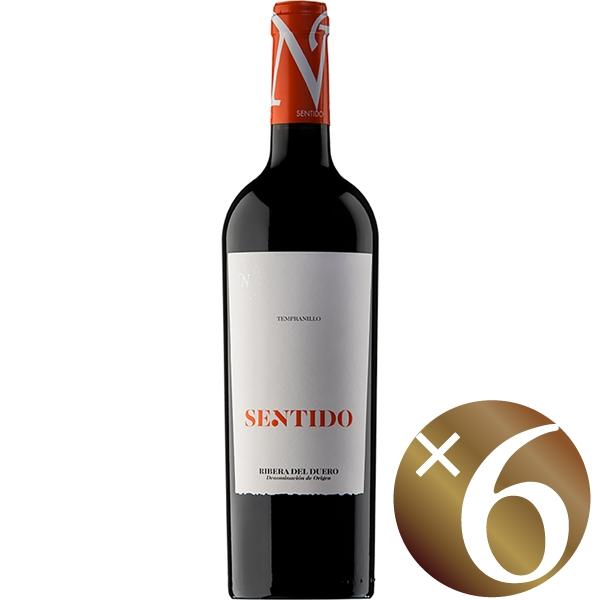 センティド/ボデガス イ ビニェードス ネオ 750ml×6本 (赤ワイン)