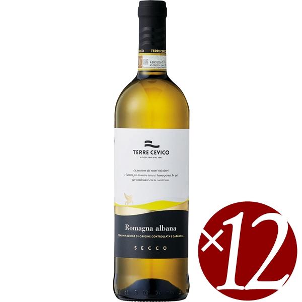 ケース買い お得な12本入り テッレ ラッピング無料 チェヴィコ アルバーナ ディ 白ワイン 超特価 750ml×12本 ロマーニャ セッコ グルッポ