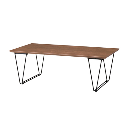 センターテーブル ブラウン アジアン風 ローテーブル リビングテーブル コーヒーテーブル りびんぐてーぶる カフェテーブル