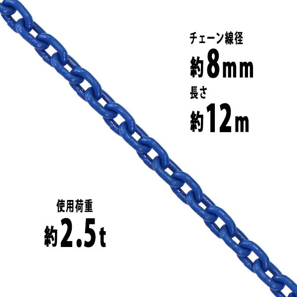 送料無料 チェーン 線径約8mm 使用荷重約2.5t 約2500kg 約12m G100 ハイグレードモデル 鎖 くさり 吊り具 チェーンスリング スリングチェーン リンクチェーン チェイン 金具 クレーン ホイスト 玉掛け 吊り上げ 運搬 建築 土木 鉄工 運輸 造船 青 g100bchain8mm12m