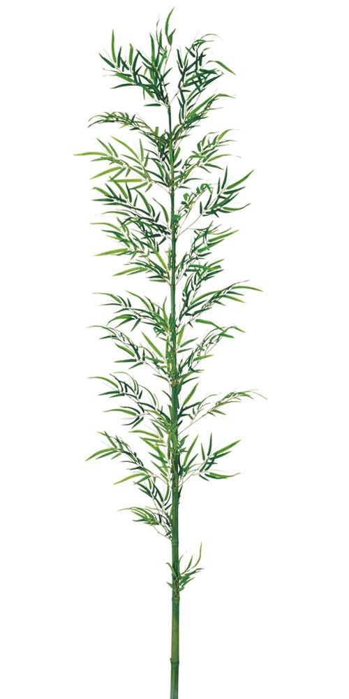 竹 バンブー 造花装飾 240cm 竹大枝 ナチュラルトランク 【代引き不可商品】