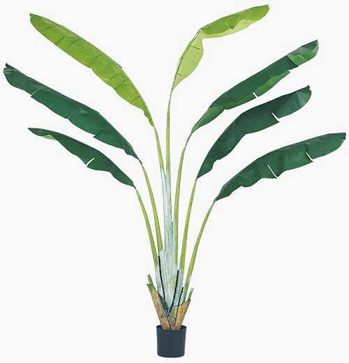 高級素材使用ブランド ヤシの木 ディスプレイ 装飾 250cmトラベラーパームツリー ※商品:ゴールドスター-花・観葉植物