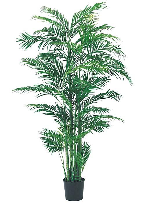 南国 装飾 180cm アレカパームツリー ※代引不可商品