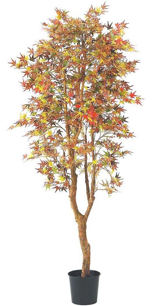 紅葉 ツリー 180cmモミジツリー(ナチュラルトランク) 秋の装飾 店舗用装飾 ※代引不可商品です