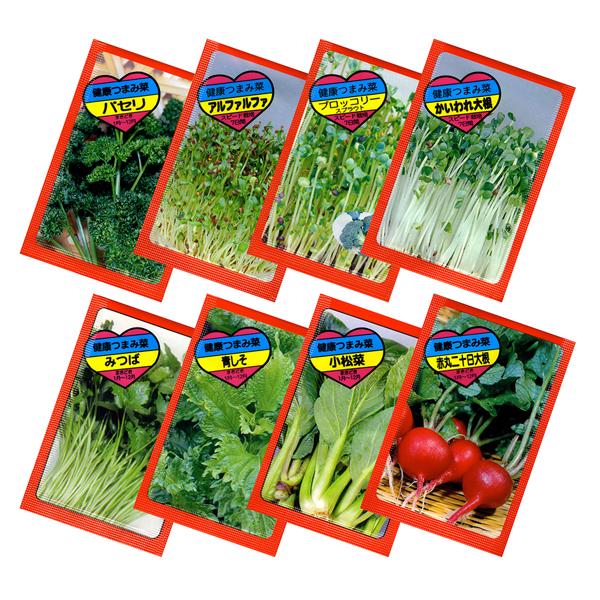 野菜の種(新デザイン)1000個セット販売 景品・粗品 販促品・ノベルティ ※季節・時期により種類は変動いたしますご了承ください