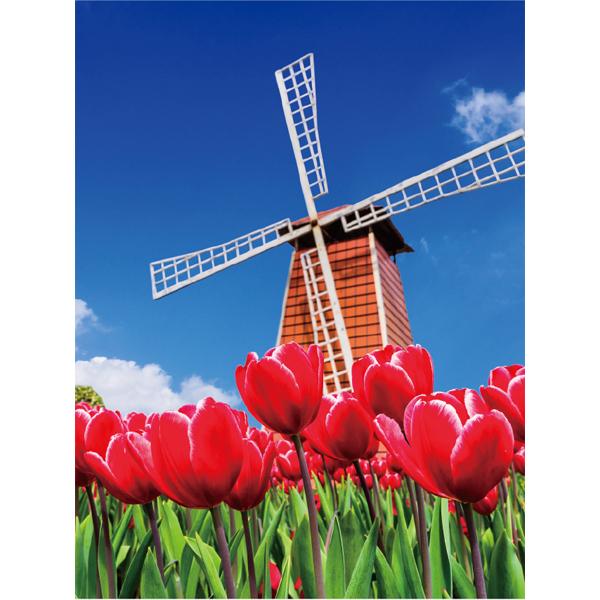 ディスプレイ バックスクリーンシート チューリップ風車 サイズ約240×175cm インスタ映えするフォトスポット作りにも最適