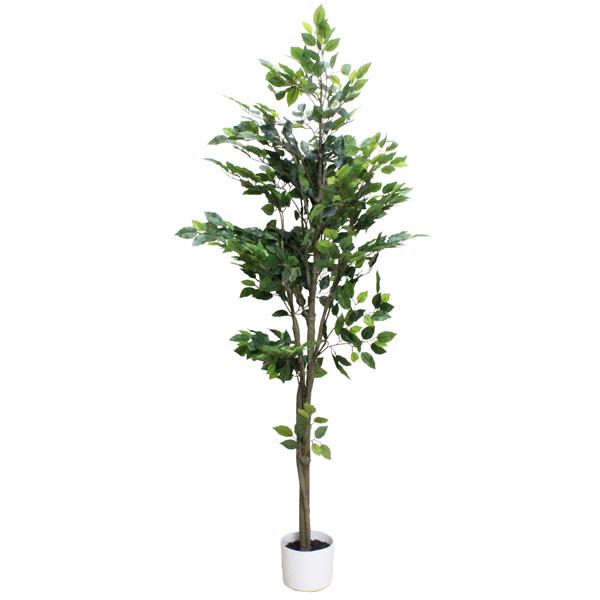 観葉植物 造花 ディスプレイ フィカスツリー155cm 【代引き不可商品】