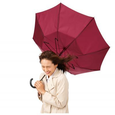 耐風傘 ジャンプ式傘 親骨60cm 通常の傘の5倍もの風速に耐える検査もクリア 60本セット販売