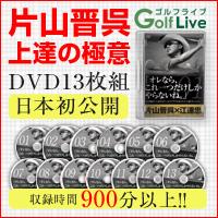 片山晋呉の「オレなら、これひとつだけしかやらないね」【ゴルフ 教材 DVD】