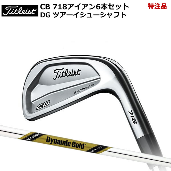 Six set dynamic gold tour issue steel shaft [Titleist] of Titleist 718 CB  iron 5-Pw