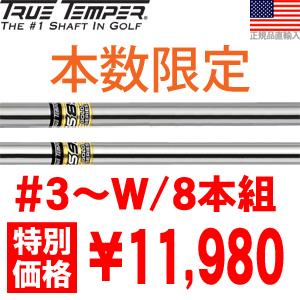 トゥルーテンパー True Temper GS85/GS95 スチール アイアンシャフト 【数量限定特価】 【#3-W/8本組】 【ゴルフ】