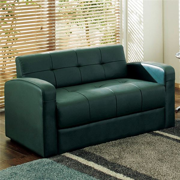 Genuine Leather Basic Sofa