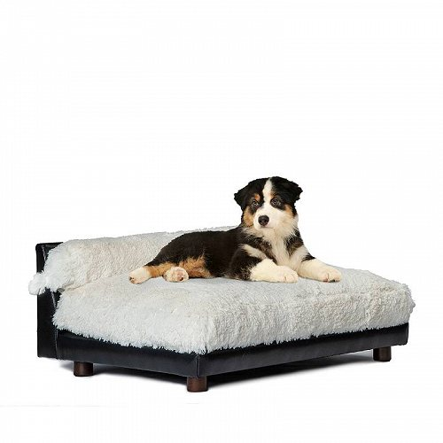 Club Nine Pets Roma Orthopedic Dog Bed Small Ivory ペット ベッド・ソファー【送料無料】【代引不可】【不可】