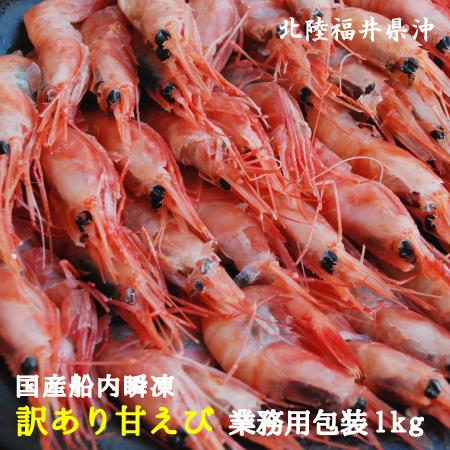 漁船直送 福井県三国港 送料無料 迅速な対応で商品をお届け致します 訳あり国産船内瞬凍甘エビ約1kg送料無料