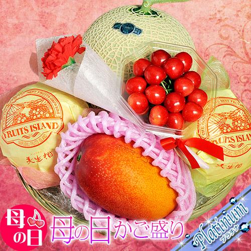 母の日 ギフト 国産 フルーツ カゴ盛り プラチナ 4種5品 ※カーネーション・メッセージカード付き(造花)送料無料