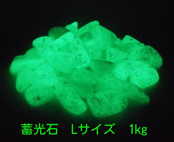 蓄光!光を蓄えておくと暗所で発光! 蓄光石 光る石 グロウストーン グリーン発光 Lサイズ 1kg