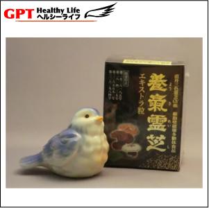 Naoi spirits turf GY shares using the powerful health food Shin-hydroponics like spirits turf extra grain (270 grain),-made in Japan-powerful health food