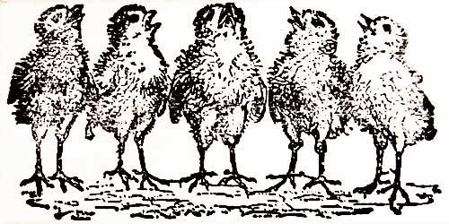 上質 男女兼用 スクラップブッキング ペーパークラフトに ラバースタンプ ひな鳥のさえずり 木の持ち手 アートスタンプ ウッドマウント 輸入スタンプ ゴム印 スタンプ