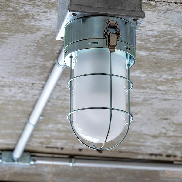照明 ライト 1灯 シーリングライト SELKIRK セルカーク スポットライト ダウンライト おしゃれ 照明器具 照明器具 調色 インテリア 北欧 カフェ モダン 寝室 トイレ 玄関 用 小型 電気 リノベーション 露出配管